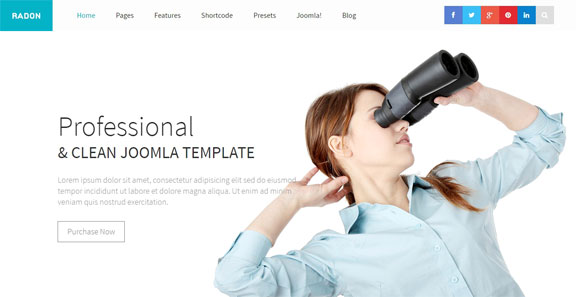 Free and responsive Joomla templates - Radon